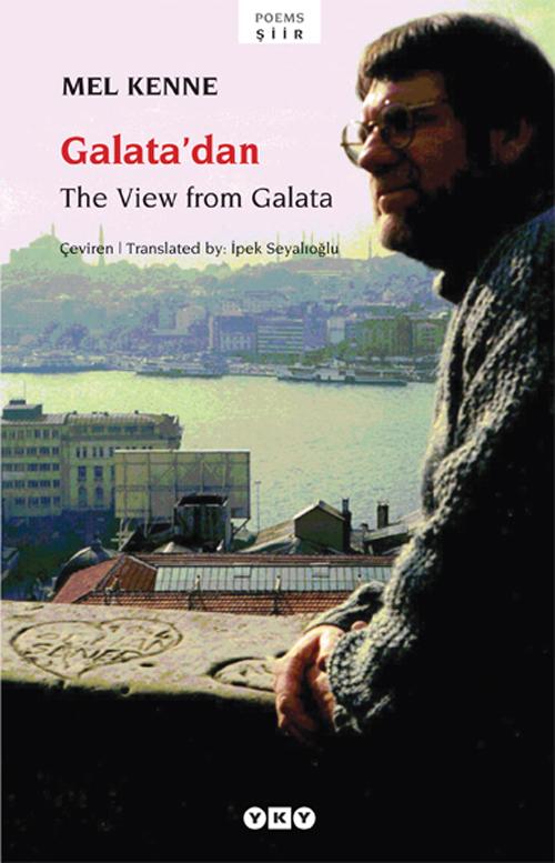The View from Galata / Galatadan